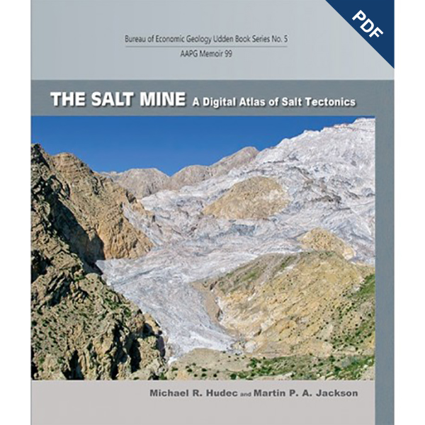 The salt mine pdf