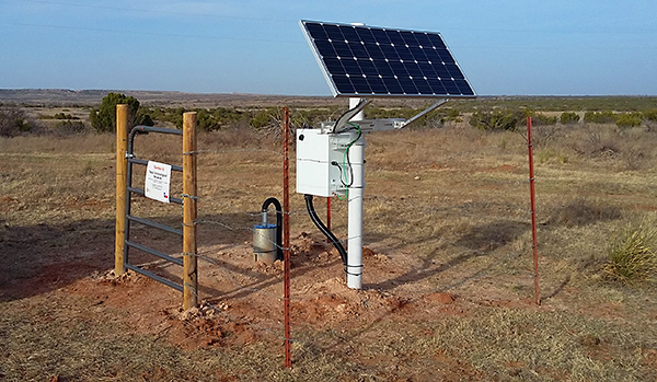 TexNet seismic station
