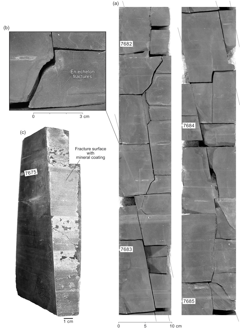 Barnett shale gas analysis bureau of economic geology figure 2 natural fractures in the t p sims core publicscrutiny Gallery