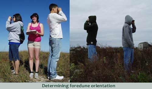 foredune orientation