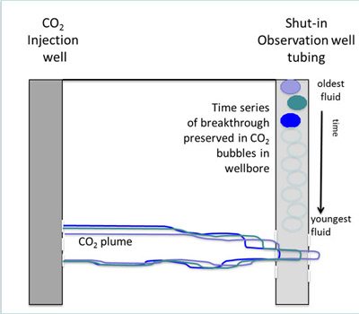 Sampling fluid in the shut-in well bore