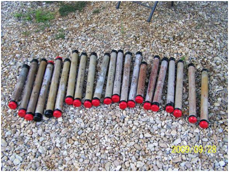 Sediment samples were collected in clear plastic tubes.
