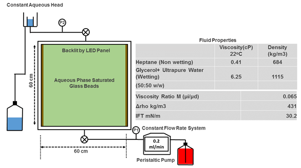 Schematic of the experimental set up including the backlit glass chamber to visualize fluid flow, peristlatic pump that sends a constant flow of 0.2 milliters per minute of the analogue fluid at the bottom of the chamber.