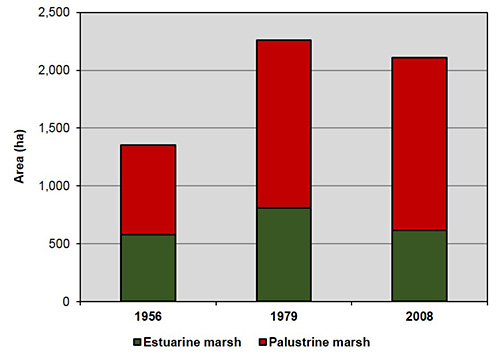 Areal distribution of emergent marsh habitats