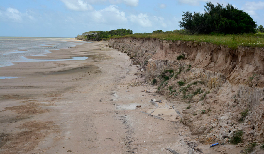 Figure S7. Sandy slope along the Matagorda Bay shoreline of Powderhorn Ranch.
