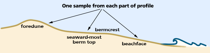 sediment diagram